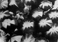 Regen<br>Joris Ivens 1929